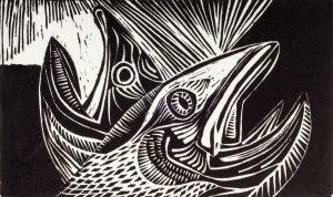 Dying Salmon   8 3/8 x 14   1954