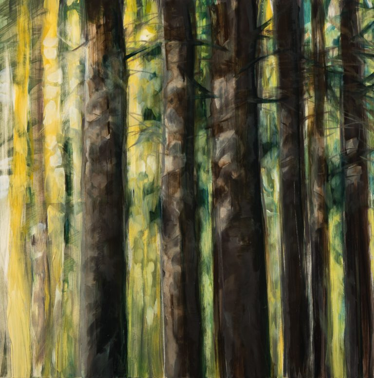 Forest Light 16 x 16, oil on panel