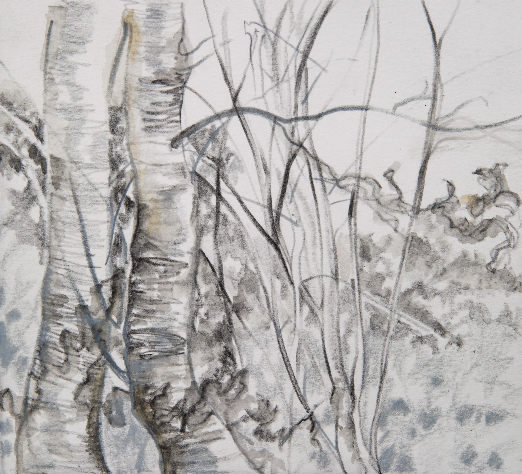 Tree Study 1 | 6x6
